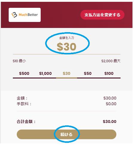 【図解】チェリーカジノの入金方法まとめ!入金限度額・手数料・反映時間も徹底解説